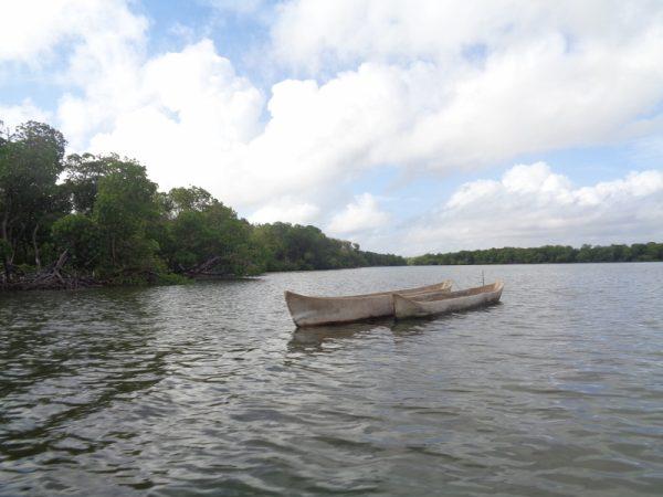 Local fishers' canoes on Mida Creek Watamu