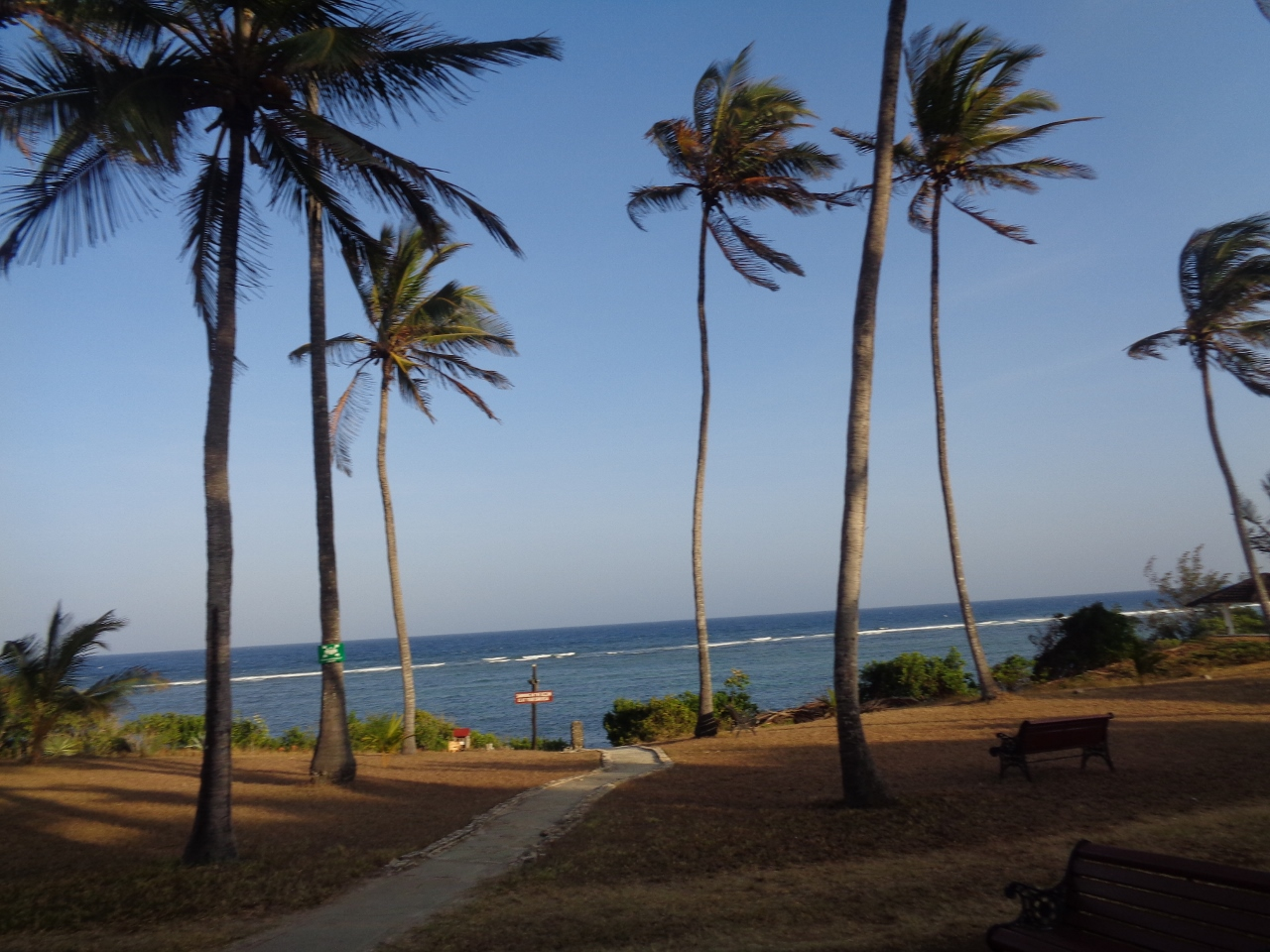 Garden by the Indian Ocean - picture copyright Rupi Mangat