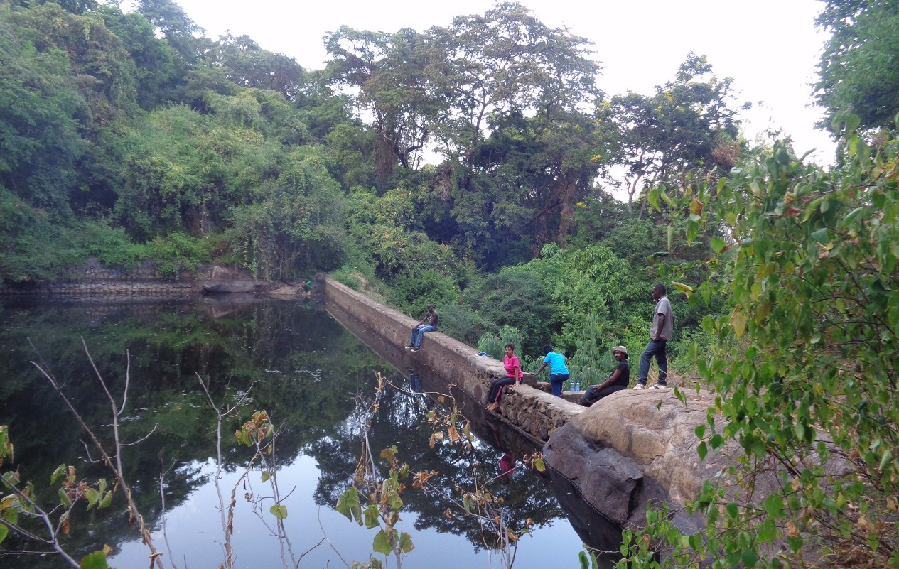 The dam in the forest -copyright Rupi Mangat