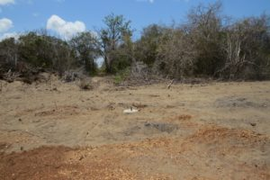 Cemented beacon on the ground inside the 'BOX' 900 acres for the proposed plant- copyright Rupi Mangat