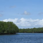Reaching Siyu through the mangrove channal -copyright picture Maya Mangat.