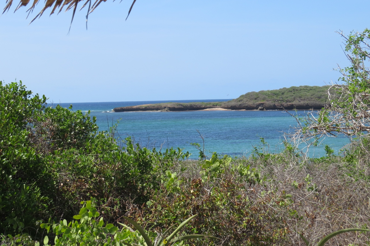 The secluded bay at Kiunga Marine National Reserve about 20 km from south Somalia Copyright Maya Mangat