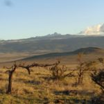 From the high peaks of Mount Kenya to the plains at Lewa -copyright Rupi Mangat