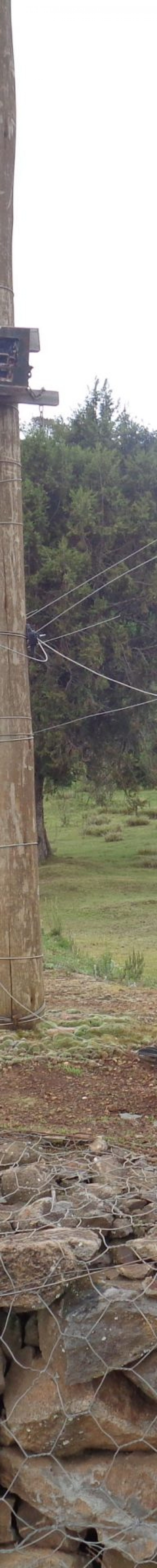 The fence between the farm lands on Mount Kenya and the Mount Kenya Forest. The elephants enter through the opening which has a sensory camera fited to the post (the little black box on the left) copyright Rupi Mangat