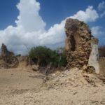 The sultanate of Pate in ruins - Pate island Copyright Maya Mangat