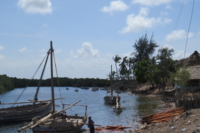 lower end of Pate by the mangrove-lined creek with a few dhows anchored and children splashing around. - Pate island Copyright Maya Mangat