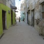 Street in Lamu Stone Town where mostly donkeys are used for transport Photo: Maya Mangat