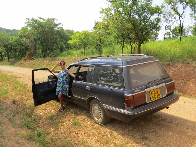 At Murchison Falls national Park inthe sturdy Toyota Crown Royal Saloon 1985 model - not a single puncture the entire 2,000km safari - copyright Rupi Mangat