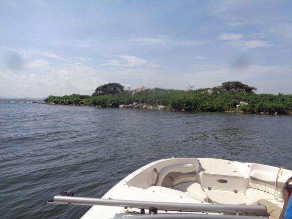Bird island Lake Victoria Uganda Copyright Rupi Mangat