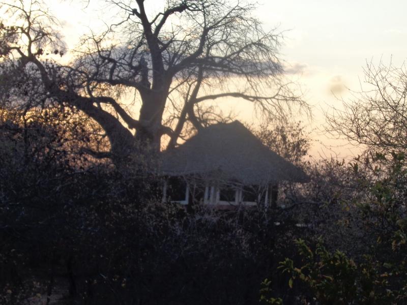 Luxury ien suite 'room' by the baobab - Tarangire Treetops in Randilen WMA in Tanzania - an eco-lodge. Picture: Galib Mangat