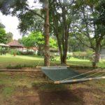 Plenty of space to relax at Brackenhurst Copyright Rupi Mangat