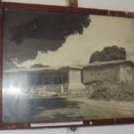 Livingstone's house in Kazeh in 1870s - the mango tree from his time. Copyright Rupi Mangat