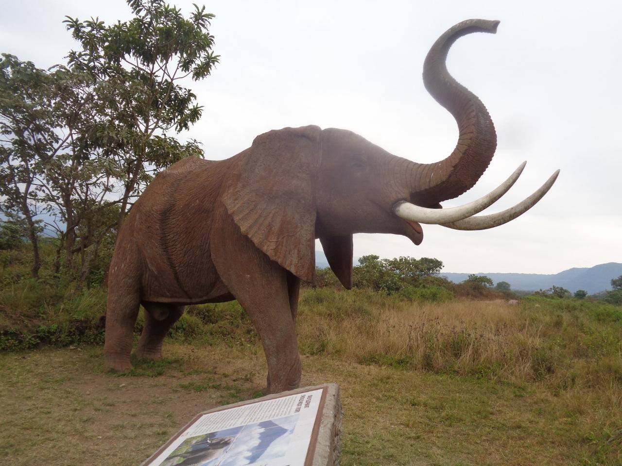 Elephant at entrance of Lake Arusha Naional Park Copyright Rupi Mangat