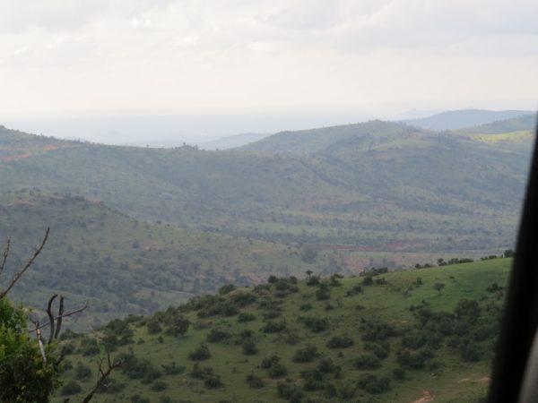 Lolldaiga Hills Landscape Copyright Rupi Mangat