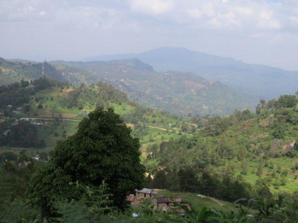 Taita Hills - northern extreme of Eastern Arc Mountains Copyright Rupi Mangat