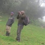 Maina Gichia and Cosmus Mghanga in the mist mountains searching for nest of Taita apalis Copyright Rupi Mangat