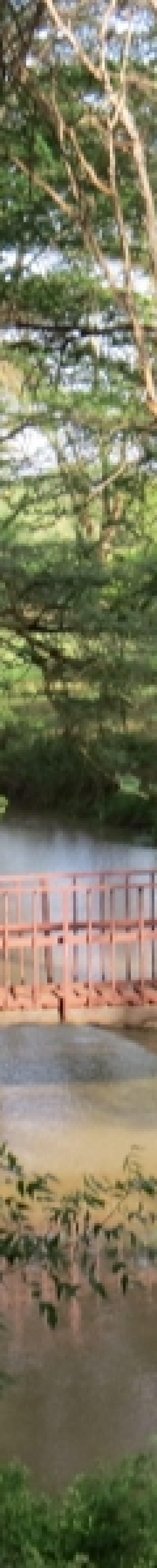 Bridge over River Sante Copyright Rupi Mangat