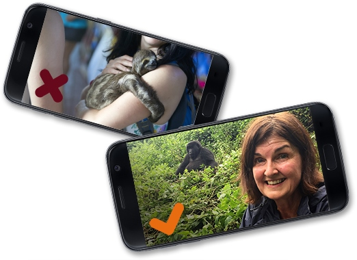 wildlife selfie 1 (522x380)