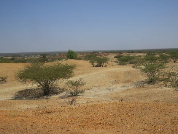 Eagle's eye-view of Turkana Basin Copyright Rupi Mangat