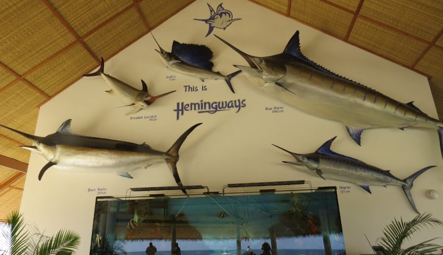 Restaurant at Hemingways with life size caste models of deep-sea fish and aquarium with coral fish. Copyright Rupi Mangat