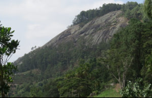 The ancient crystalline rock face of Ngangao some 260 million years oldTaita Hills - in the time of the dinosaurs. Copyright Rupi Mangat