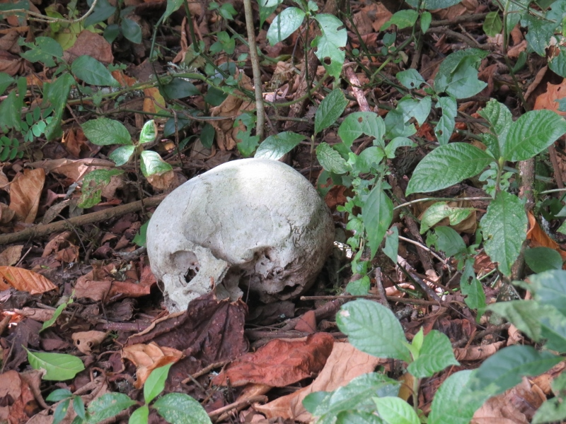 Skulls of respected man ioutside the cave - in Vuria part of the Taita Hills - copyright Rupi Mangat