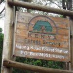 Ngong Road Forest Station in Nairobi.. Copyright Rupi Mangat
