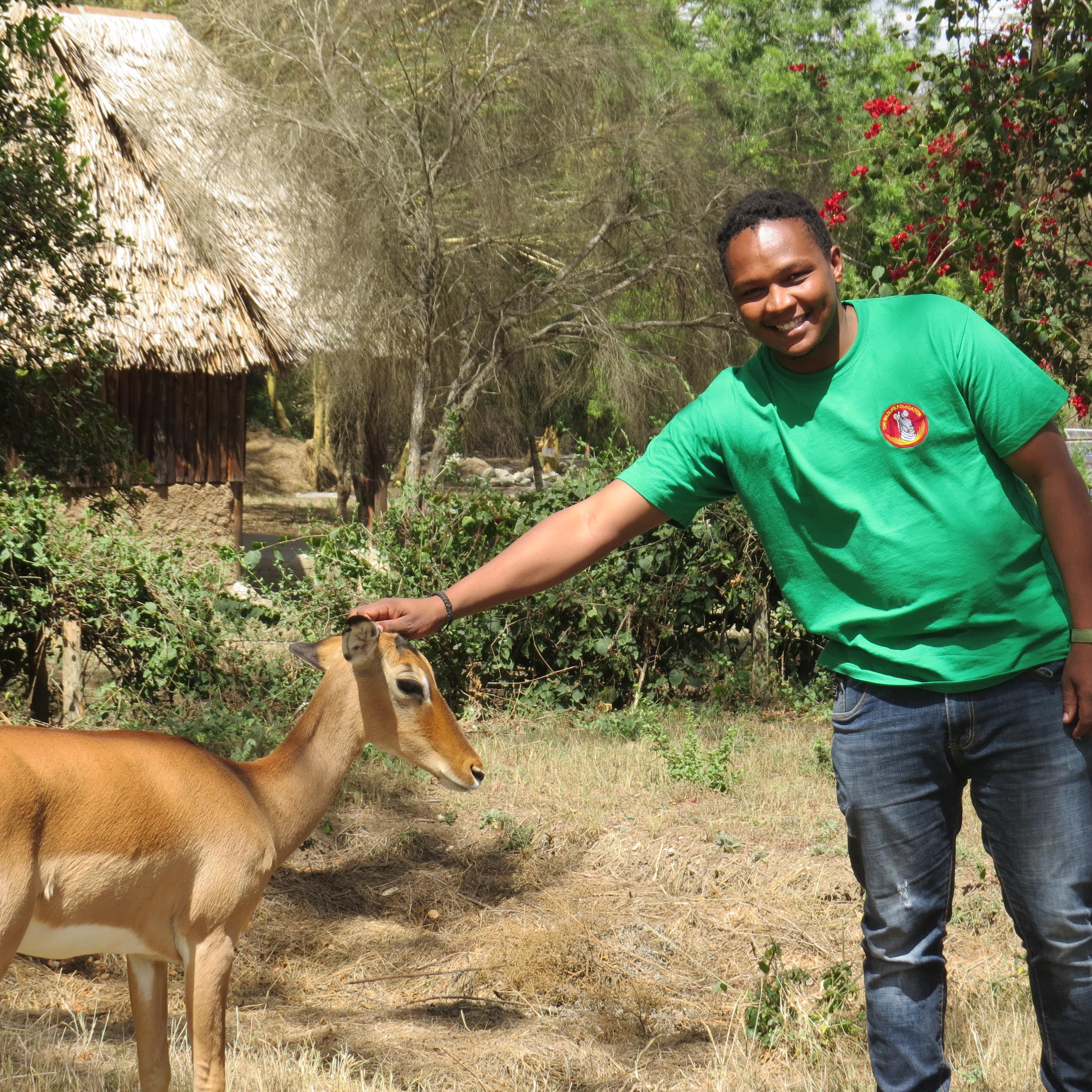 Jacob Tunoi of The Wildlife Foundation at Naretunoi Conservancy, Kitengela with Impi the Impala Copyright Rupi Mangat