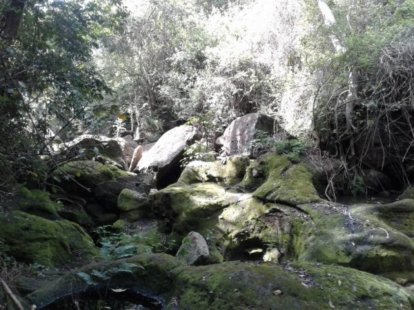 Ndarugo, a subterranean river. Copyright Rupi Mangat