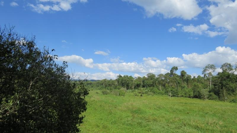 saiwa swamp copyright maya mangat (800x450)