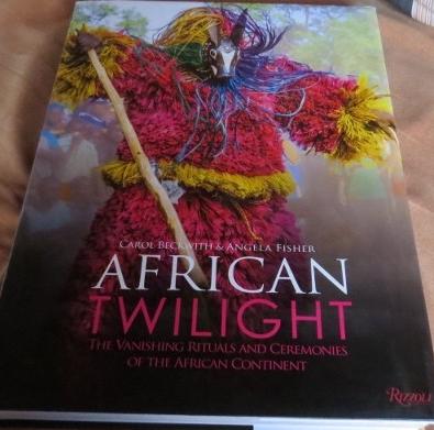 african-twilight-cover.-copyright-rupi-mangat-800x450.jpg
