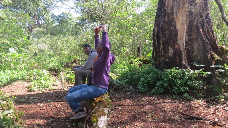 Forest bathing or 'Shinrin-yoku' - Faith Cepkemei watched by John Gitiri in kSouth Nandi Forest. May 2019. Copyright Rupi Mangat (800x450)