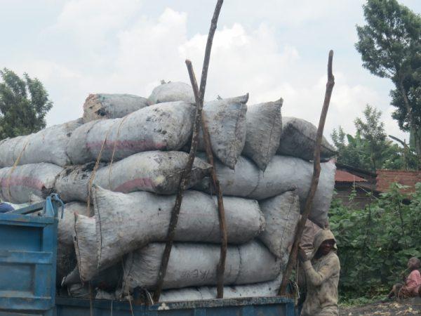 Charcoal trade rife in the Kahuzi-Biega area in DRC. Copyright Rupi Mangat (800x600)