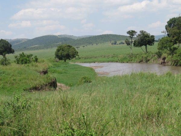 Jun 2019 Sand River between Serengeti and Maasai Mara. Copyright Rupi Mangat (800x600)