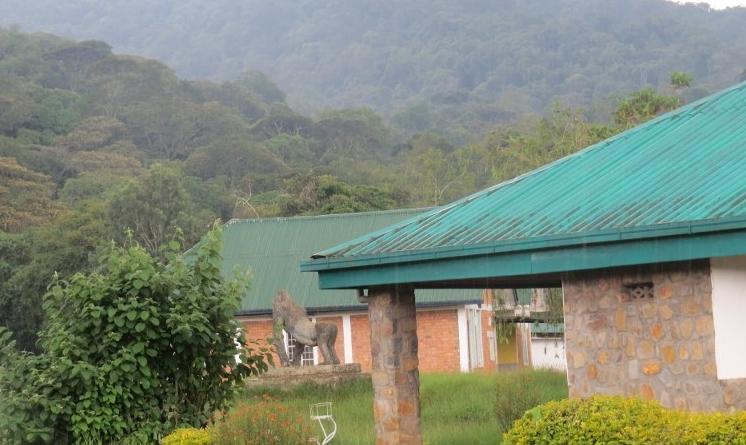 Park HQ at Kahuzi-Biega National Park, DRC. Copyright Rupi Mangat (800x600)