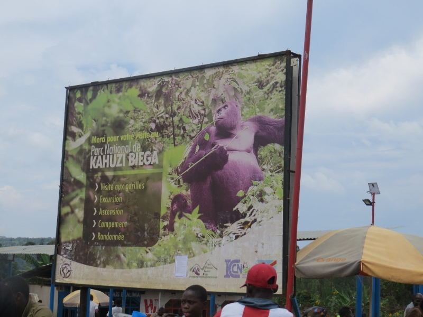 Poster near Bukavu en route to Kahuzi-Biega in DRC. Copyright Rupi Mangat (800x600)