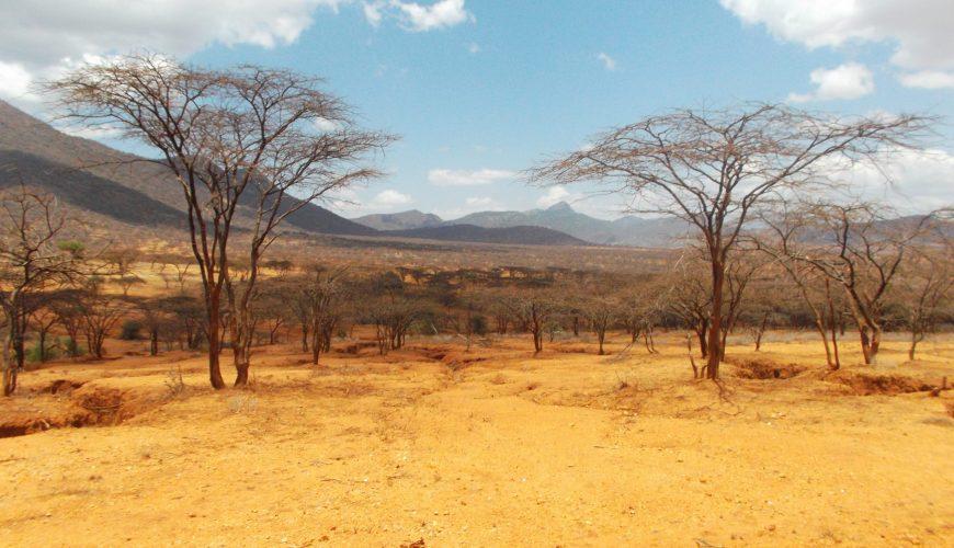 Journeys Through Africa