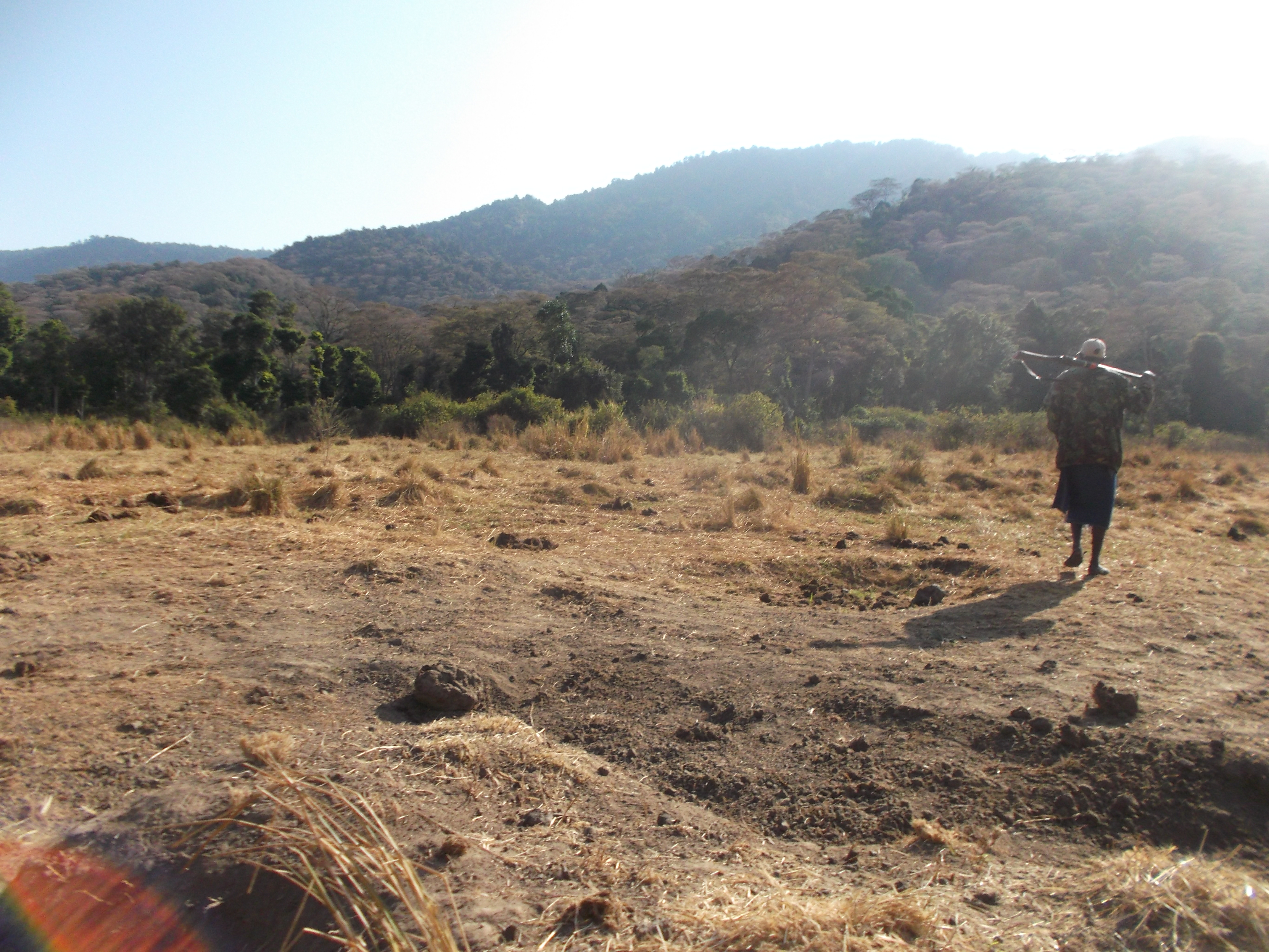 On Mathews Range between dry lower slope and the high forest- copyright rupi mangat