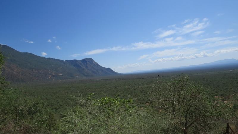 The plains of the Pokot along Sekerr Hills - Mt Mtelo is part of it. Copyright Rupi Mangat (800x450)