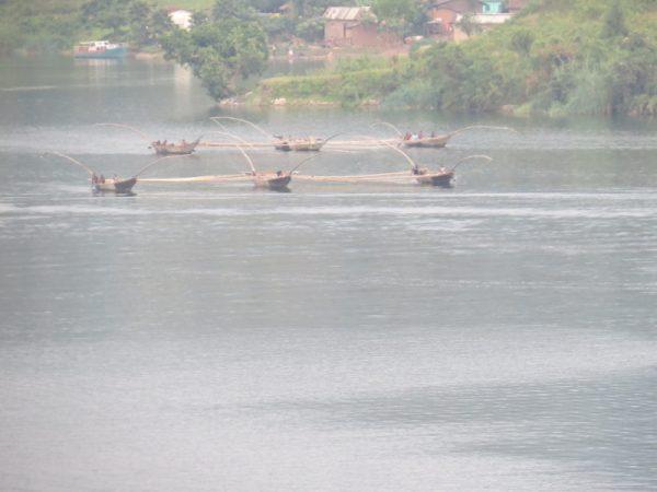 Pirogues on Lake Kivu as fishermen row ot for the night to trawl for the tasty fingerling, sambaza Copyrght Rupi Mangat (800x600)