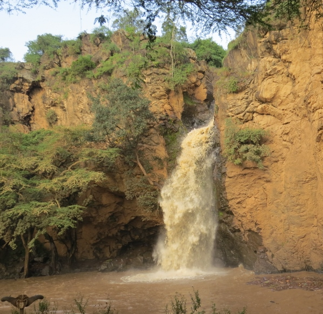 makalia-falls-in-lake-nakuru-national-park.-copyright-rupi-mangat-800x600.jpg