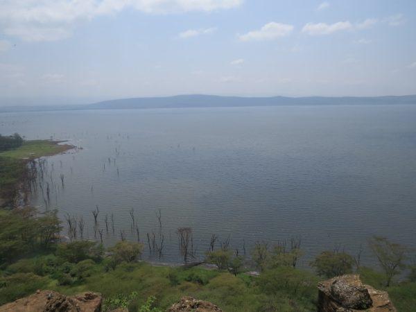 The flooded laken Lake Nakuru National Park. Copyright Rupi Mangat (800x600)