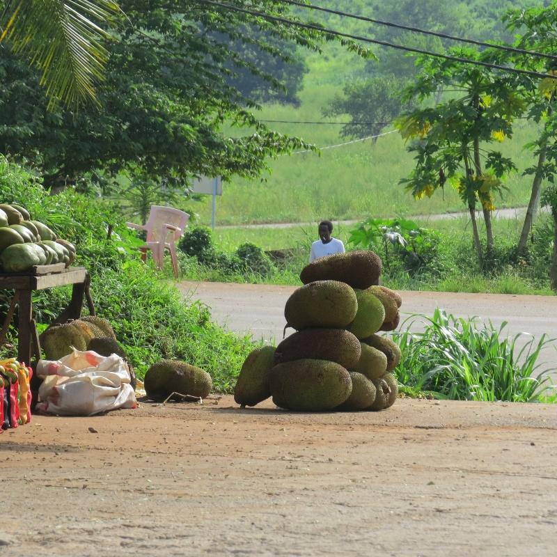 Jackfruit for sale Tanzania. Copyright Rupi Mangat (800x800)