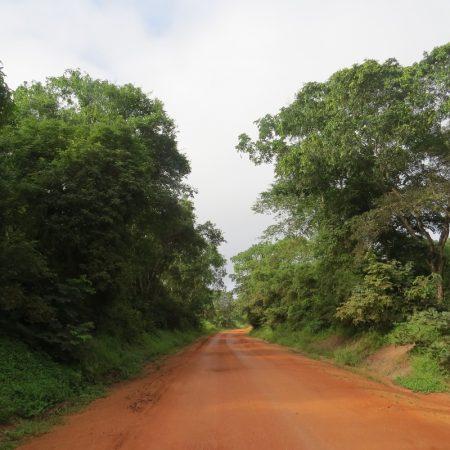 Road approaching Selous from Kibiti Tanzania. Copyright Rupi Mangat (800x800)