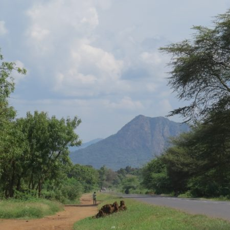 The road to Korogwe with the peaks of Pare mountains, Tanzania. Copyright Rupi Mangat (800x800)