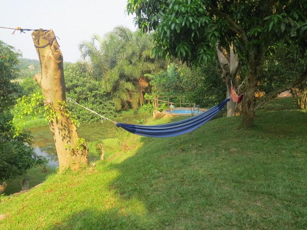 Garden at Via Via Entebbe. Copyright Rupi Mangat (800x600)