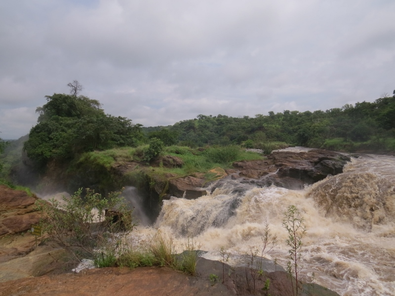 Murchison falls in the National Park in 2017. Uhuru Falls is separated by a thi islet. Ccopyright Rupi Mangat (800x600)